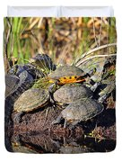 Reptile Refuge Duvet Cover by Al Powell Photography USA