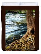 River Through Woods Duvet Cover by Elena Elisseeva