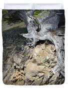 Rooted on the Edge Duvet Cover by Bruce Gourley