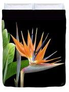 Royal Beauty I - Bird Of Paradise Duvet Cover by Ben and Raisa Gertsberg