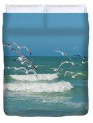 Royal Tern Frenzy Duvet Cover by Kim Hojnacki