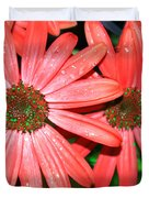 Salmon Daisy Duvet Cover by Aimee L Maher Photography and Art