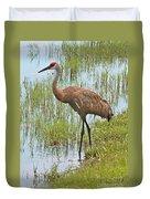 Sandhill In The Marsh Duvet Cover by Carol Groenen