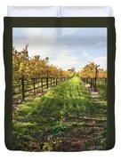 Santa Maria Vineyard Duvet Cover by Sharon Foster
