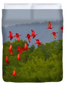 Scarlet Ibis Duvet Cover by Tony Beck