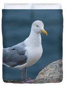 Seagull Duvet Cover by Sebastian Musial