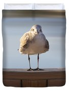Seagull With An Attitude  Duvet Cover by Mike McGlothlen