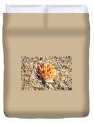 Seashell On Sandy Beach Duvet Cover by Carol Groenen