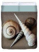Seashells Spectacular No 24 Duvet Cover by Ben and Raisa Gertsberg