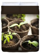 Seedlings  Duvet Cover by Elena Elisseeva