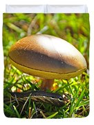 Shade Of The Shroom Duvet Cover by Al Powell Photography USA