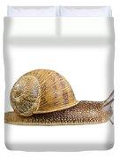 Snail Duvet Cover by Elena Elisseeva