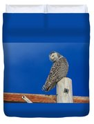 Snowy Owl Duvet Cover by Everet Regal