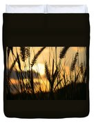 Solstice Duvet Cover by Laura Fasulo