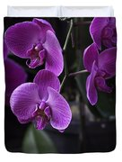 Some Very Beautiful Purple Colored Orchid Flowers Inside The Jurong Bird Park Duvet Cover by Ashish Agarwal