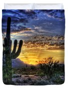 Sonoran Sunrise  Duvet Cover by Saija  Lehtonen