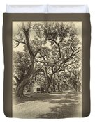 Southern Lane Sepia Duvet Cover by Steve Harrington
