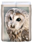 Spotted Owl Duvet Cover by Shoal Hollingsworth