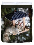 Squirrel On Bird Feeder Duvet Cover by Elena Elisseeva