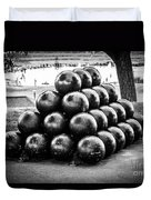 St. Joseph Michigan Cannon Balls Picture Duvet Cover by Paul Velgos