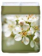 St Lucie Cherry Blossom Duvet Cover by Anne Gilbert