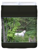 Stallion On Independence Day Duvet Cover by Patricia Keller
