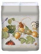 Still Life Of Branch Of Gooseberries Duvet Cover by Jan Van Kessel