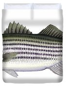 Striped Bass Duvet Cover by Charles Harden