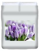 Striped Purple Crocuses In The Snow Duvet Cover by Sharon Talson