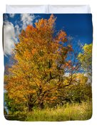 Sugar Maple 3 Duvet Cover by Steve Harrington