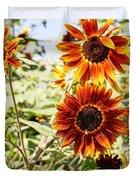 Sunflower Cluster Duvet Cover by Kerri Mortenson