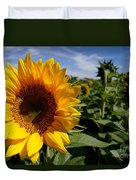 Sunflower Glow Duvet Cover by Kerri Mortenson