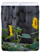 Sunflower Quartet Duvet Cover by Bill  Wakeley