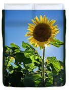 Sunflower With Sun Duvet Cover by Donna Doherty