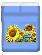 Sunflowers In Field Duvet Cover by Elena Elisseeva