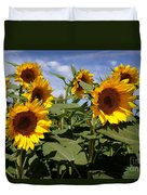 Sunflowers Duvet Cover by Kerri Mortenson