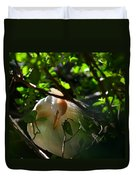 Sunlit Egret Duvet Cover by Laura Fasulo