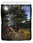 Sunshine Pathway Landscape Duvet Cover by Christina Rollo