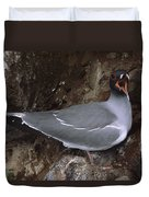 Swallow-tailed Gull And Chick Calling Duvet Cover by Tui De Roy