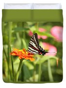 Swallowtail Butterfly Duvet Cover by Kim Hojnacki