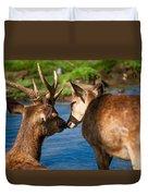 Tender Kiss. Deer In The Pamplemousse Botanical Garden. Mauritius Duvet Cover by Jenny Rainbow