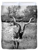 Texas Longhorns a Texas Icon Duvet Cover by Christine Till