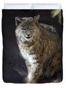 The Bobcat Duvet Cover by Saija  Lehtonen