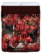 The Old Shed Duvet Cover by John Edwards