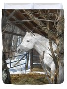 The Paso Fino Stallion At Home Duvet Cover by Patricia Keller