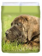 There Is Nothing Better Than A Bone And Some Warm Grass Duvet Cover by Jeff Swan
