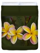 Three Pink And Yellow Plumeria Flowers - Hawaii Duvet Cover by Brian Harig