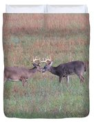 Touching Moment Duvet Cover by Dan Sproul