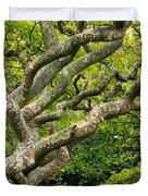 Tree #1 Duvet Cover by Stuart Litoff