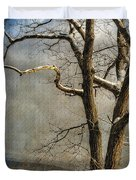 Tree In Winter Duvet Cover by Lois Bryan